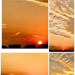 夕日/風景/空 🌈🌴🌺🦚🍂🍁🌾🍄  🌈☀️今日の夕日がと…