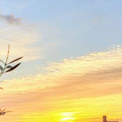 空/風景/朝日 🌴🌺⛱🌼🐠🌴💓  ٩(๑´0`๑)۶ お…(1枚目)