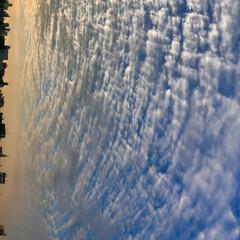空朝日/風景 🌈🌴🦚🌺 🍂🍁🌾🍄٩(*´︶`*)۶おは…