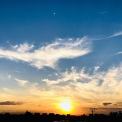 夕日/空/風景 🌈🌴🦚🌺🍂🍁🌾🍄  🌅今日の夕日のもう1…