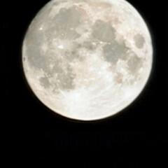 風景/空/満月 🌺🍹🐊🍉🌴🌻🌴🍍  🌴🦩こんばんは(*^…(1枚目)