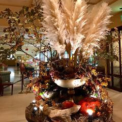 プレストンコートホテル/軽井沢 🌈🌴🦚🌺🍂🍁🌾🍄  ホテルラウンジ  素…