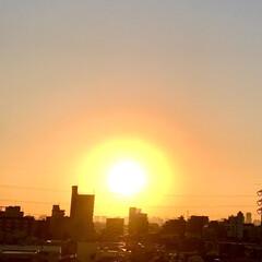 朝日/風景/空 🌈🌴🌺🦚🐠🌴💓  ٩(*´︶`*)۶おは…(1枚目)