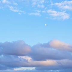 空/風景/夕やけ 🌺🍹🐊🍉🌴🌻🌴🍍  🌴🦩今日の夕やけの逆…(1枚目)