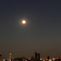 月/風景 🌈🌴🦚🌺🍂🍁🌾🍄こんばんは(*^▽^*)…