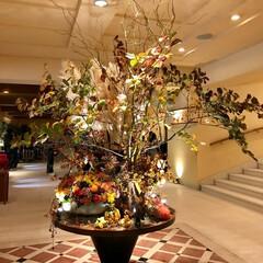 プレストンコートホテル/軽井沢 🌈🌴🦚🌺🍂🍁🌾🍄   🌾🍂🍁ホテルのラウ…