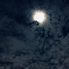 月/空 🌈🌴🌺🦚🍂🍁🌾🍄  💫✨今日の🌔☁️  …