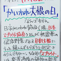 かいわれ大根/スプラウト/A型看板/今日は何の日/ホワイトボード/平田家具店/... おはようございます! 本日のホワイトボー…(1枚目)