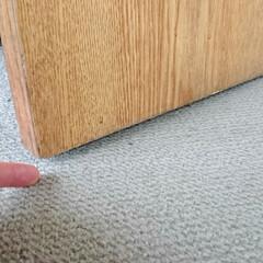 ひらた家具店/平田家具店/インテリア/カーペット/じゅうたん/敷物/... お部屋全体にカーペットを敷きたい、という…