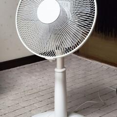 冷夏/扇風機/ひらた店長/平田家具店/ひらた家具店 今年は曇りの日が多く、この時期だと言うの…