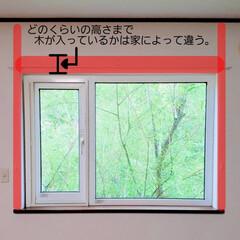 ひらた家具店/平田家具店/インテリア/カーテンレール/窓/窓枠/... ご自分でカーテンレールを取り付けようとす…