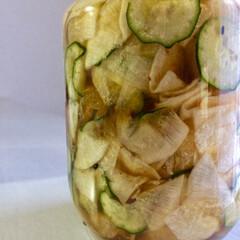 作り置き/おうちごはん/節約/フード ある意味野菜のハーバリウム。 ピクルス☆…