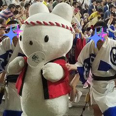 徳島県/阿波おどり 今日から阿波おどりが始まりました🎵 街の…(10枚目)