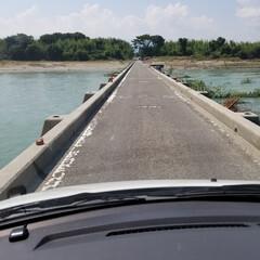 吉野川/ひまわり畑/潜水橋/善入寺島/おでかけ 今日は潜水橋を渡って善入寺島(ぜんにゅう…