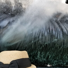 洗車中 なぜかいつも首をすくめてしまう😆💦