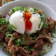 徳島らーめんの具乗せ丼/おうちごはん お昼にごはんを食べに帰ってくるダリの好物…