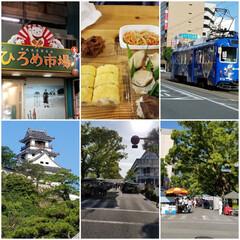 高知城/朝市/ひろめ市場/おでかけ/フード/グルメ 毎週日曜日に朝市が高知市のど真ん中で開か…