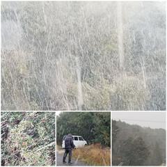 ハタダの塩バターどら焼き/吹雪/蒲生田岬/エマルジョンのハンバーグ/おでかけ/グルメ 今日は雪が降ったり止んだりと変な天気な中…