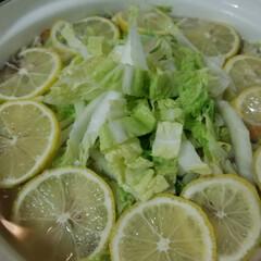レモン塩でレモン鍋/おうちごはんクラブ/おうちごはん/グルメ/フード/レモン 今日の晩ごはん😋🎶 自家製塩レモンでレモ…