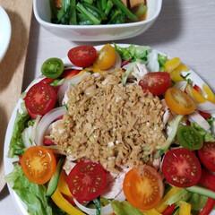 サラダ/棒々鶏/おうちごはん/フード TAKAさんの棒々鶏ソースで棒々鶏サラダ…