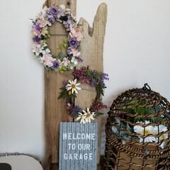 鳥籠/流木/おうちごはんクラブ/LIMIAインテリア部/雑貨/ハンドメイド わが家にも素敵な🎁が💕 流木と鳥籠に合わ…