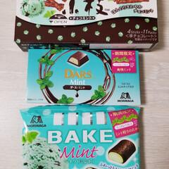 ミントレベル1~3/チョコミント/フード MORINAGAのチョコミントシリーズ発…
