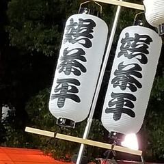 徳島県/阿波おどり 今日から阿波おどりが始まりました🎵 街の…(2枚目)