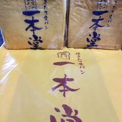 一本堂の食パン/おでかけ/グルメ/フード/ダイソー 久しぶりに東京の実家に帰って来たら 家の…