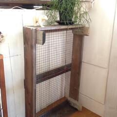 木の箱/ディスプレイ/木箱/wood/100均網/DIY/... 網付けて完成。 今の所は壁に付けたいなと…