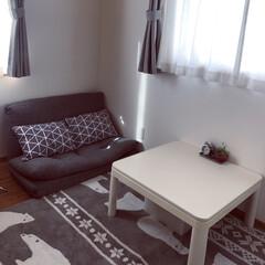 電気カーペット/コタツ/ソファーベッド/インテリア/ニトリ 寒くなってきたので部屋も冬支度