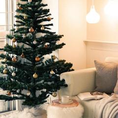 2018/クリスマス/クリスマスツリー/雑貨/インテリア/ニトリ/... 夕方のツリー。ほっこり あたたかい雰囲気…(1枚目)