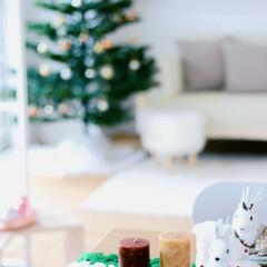 おうち/2018/クリスマス/クリスマスツリー/おうちごはん/DIY/... トナカイ!こんなに可愛いアイテムを今年は…(1枚目)