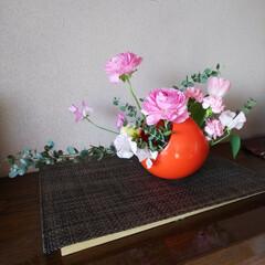 生け花/春/インテリア/玄関 玄関、下駄箱上。春のお花を活けました。