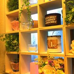 アレンジ/窓/トイレ/グリーン/DIY/雑貨/... ボックス増やしました。