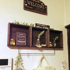 壁面/キッチン雑貨/グリーン/DIY/雑貨/100均/... キッチンの壁面をバージョンアップ  プリ…