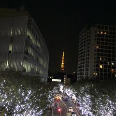 夜景/クリスマス/東京タワー 久しぶりに東京に遊びに行きました。きれい…