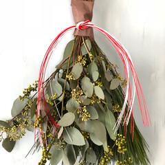 お正月/ハンドメイド/グリーン/玄関/住まい/インテリア/... 年末に束ねたお正月飾り。 フレッシュなユ…