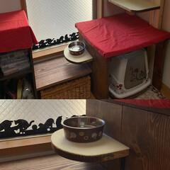 結露対策/水飲み場/LIMIAペット同好会/ペット/猫/にゃんこ同好会/... 水飲み場も設置完了です😊  窓にセリアで…