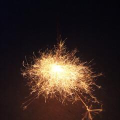 線香花火/花火/夏の思い出 ・ 線香花火が1番好きです。