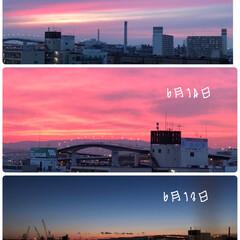 リビングから/大阪市内/夕焼け/地震/窓からの景色 リビング窓から(´˘`*)❤  どれも …