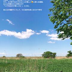 がんばれ日本/コロナに負けるな/日光浴して免疫UP/ラムサール条約湿地/渡瀬遊水地 寒かった、昨日と打って変わり 今日は、気…