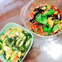 家庭菜園/夕飯のおかず/マヨ酢の物/揚げ浸し/夏野菜/おうちごはん/... 畑のキュウリにナスにピーマン食べ頃😋 朝…