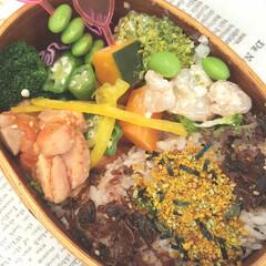 おべんとう/鶏/カボチャ/人参/ケチャップ/枝豆/... 今日のおべんとう 鶏のケチャップ煮、茹で…