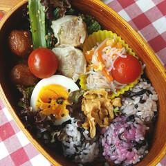 おべんとう/ケチャップ/肉団子/しゅうまい/小松菜/春雨/... 妹のおべんとう ケチャップ味の肉団子、ゆ…