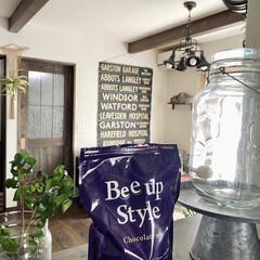 Bee up Style Chocolate風味   Bee up Style(ソイプロテイン)を使ったクチコミ「新ボディーメイクプロテイン「ビーアップス…」(1枚目)