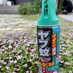 フマキラー 虫よけスプレー ヤブ蚊バリア 450ml(その他スキンケア、フェイスケア)を使ったクチコミ「梅雨の合間の雨が降ってない曇り空の中、庭…」
