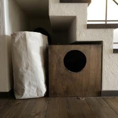 猫グッズ/ランドリーボックス/ダイソー/100均/収納/住まい/... ダイソーのランドリーボックスなんですが、…