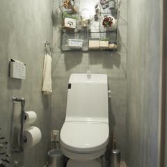 シルバーインテリア/コンクリート調壁紙/トイレットペーパーホルダー/塩ビパイプ/インダストリアル/トイレ/... 我が家のトイレは激狭のため正面からカメラ…