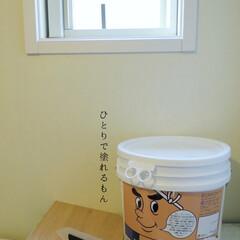 ウィルス対策/調湿効果/おうち時間を楽しむ/おうち時間/模様替え/ひとりで塗れるもん/... 洗面所の壁に漆喰塗料を塗りました。 湿気…(3枚目)