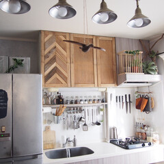 インドアグリーン/グリーン/DIY/キッチン/収納 お天気のいい日は横のベランダからの日差し…(1枚目)